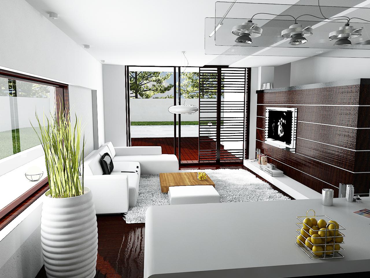 Casa moderna aw 008 proiect casa 13 arhipura for Casa moderne