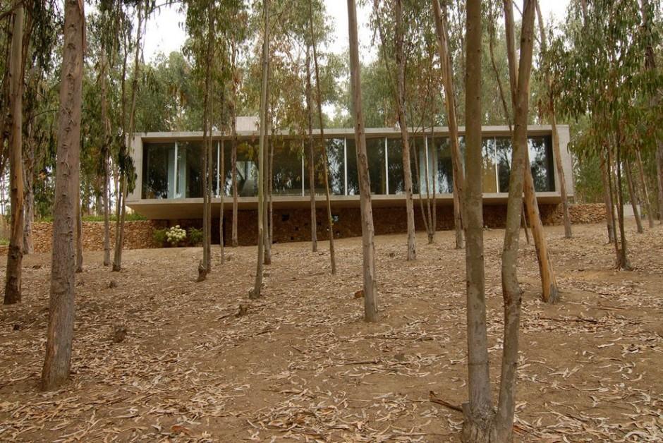 Omnibus House_ proiecte arhipura_om_240313_08-940x628