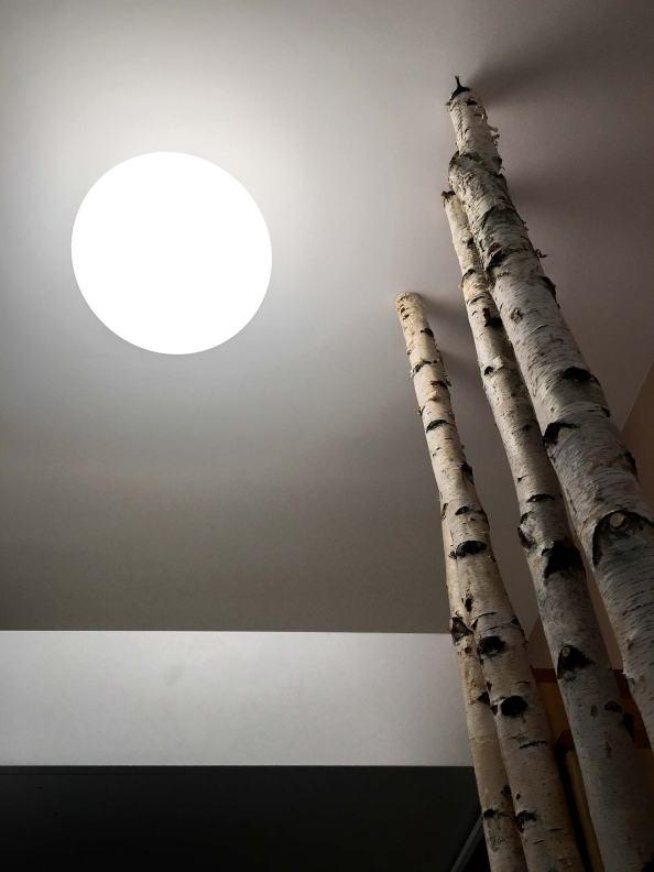 outbox-studio_apartament-saguna_arhipura_19