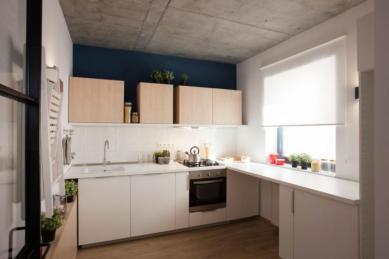 Apartment-in-Bucharest-by-Bogdan-CiocodeicДѓ-Diana-RoЕџu-11