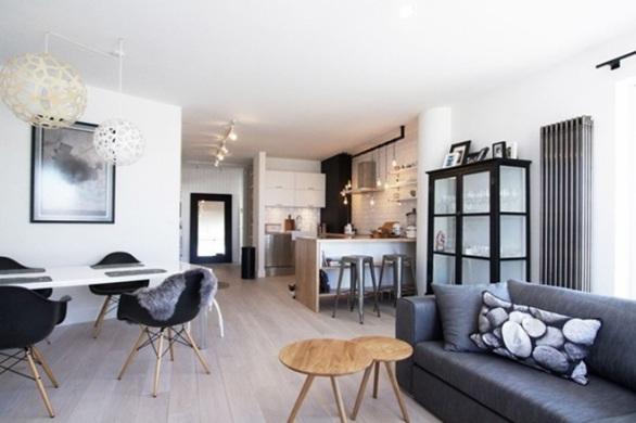 Scandinavian-Apartment-1
