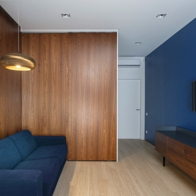 home-media-room-with-dark-blue-walls-inspiration
