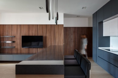 wood-wall-panels-in-modern-apartment-decor
