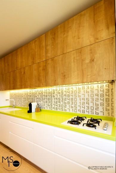 Miso Architects_Ap. Familia Dobrescu (17)