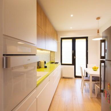 Miso Architects_Ap. Familia Dobrescu (19)