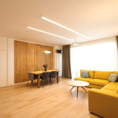 Miso Architects_Ap. Familia Dobrescu (3)