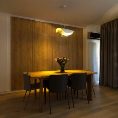 Miso Architects_Ap. Familia Dobrescu (7)
